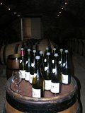 ABFW Visit - Wines for tasting in the Cellar