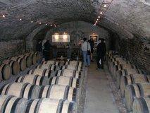 ABFW Visit - Cellar