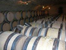 Visiting the Cellar at Lamy Pillot
