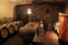 Barrel cellar at Domaine des Perelles in St. Veran