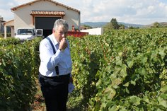 Anthony tasting the 2016 harvest for quality Control