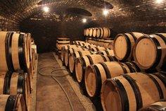 Oak barrels awaiting the 2016 vintage, Dec 2016
