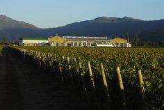 Winemaking buildings