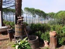 Gardens overlooking the winery