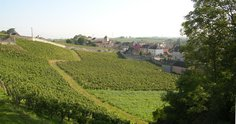 Hill within the walled 'Clos du Chapeau'
