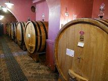 Oak tanks for the main fermentation