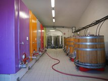 Rainbow coloured tanks in the initial fermentation room