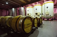 Wine in vats