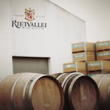 Oak barrels at the winery