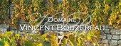 Domaine Vincent Bouzereau