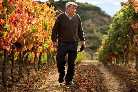 Legendary winemaker Vitorino Eguren Ugarte visiting in September